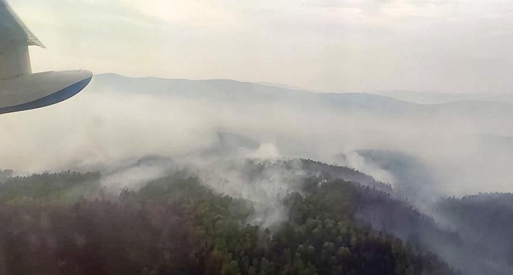 Bilden visar rök från en av Sibiriens skogsbränder.