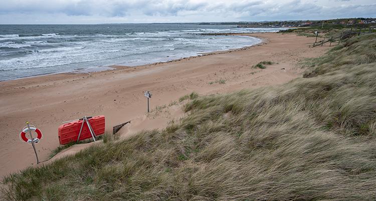 En sandstrand och havet.