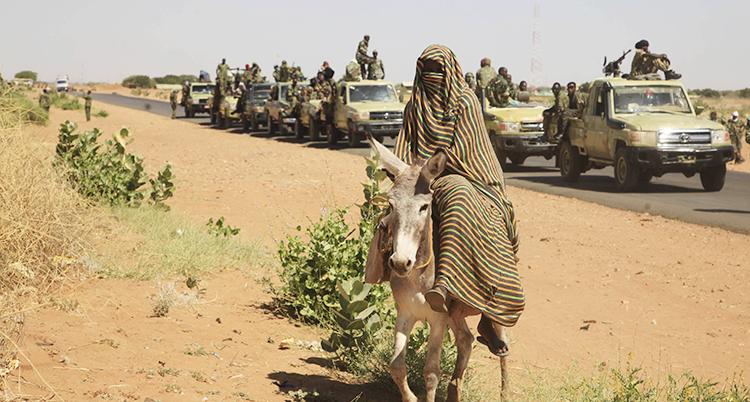 En kvinna täckt av kläder rider på en åsna. Bakom henne syns regeringens militärer i bilar som åker på rad på en väg.