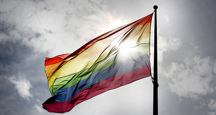 Regnbågsflaggan.