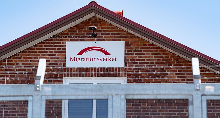 Staket vid Migrationsverkets röda tegelbyggnad i Ljungbyhed.