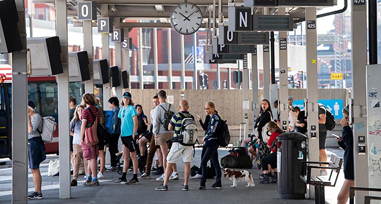 En massa människor står utomhus och väntar. De väntar på att bussar ska komma. De är på en terminal för bussar.