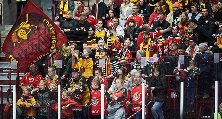Vi ser en läktare på en match i ishockey. Det är människor som hejar på Luleås lag. De har matchtröjor och en flagga där det står Luleå hockey.