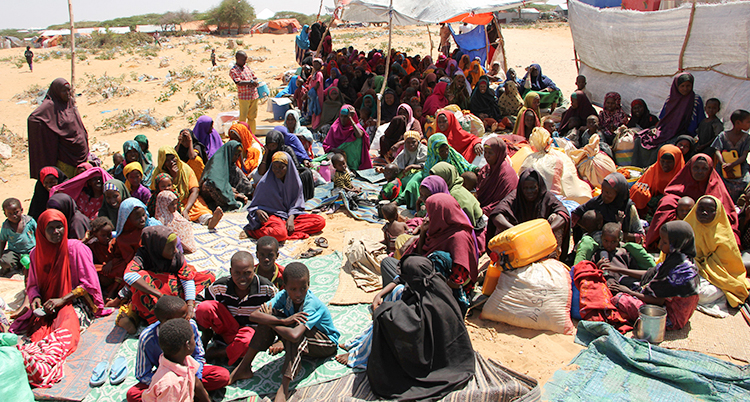 En stor grupp flickor och kvinnor i ett flyktingläger i Somalia. En del har också barn.
