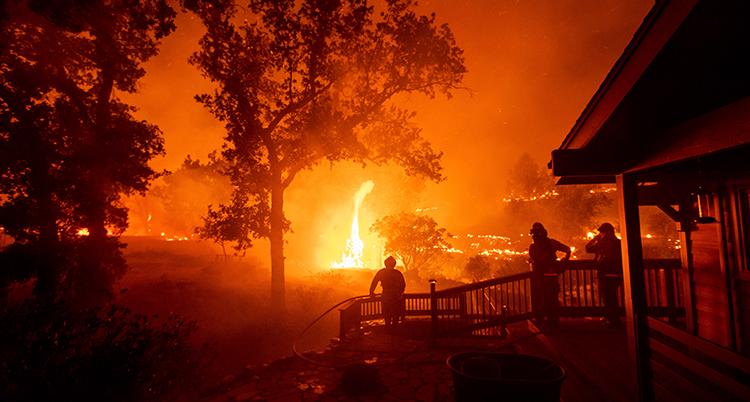 Hela bilden är orange. Det är branderna som ger färgen. Några män står och tittar på lågorna.