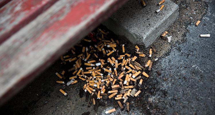 Massor av cigarettfimpar ligger på asfalten.