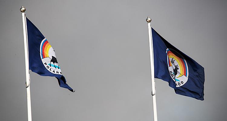 Vi ser två flaggstänger. Där finns flaggor. I mitten av flaggan är det en ren. Det står Polarbröd. Runt flaggstängerna är det rök.
