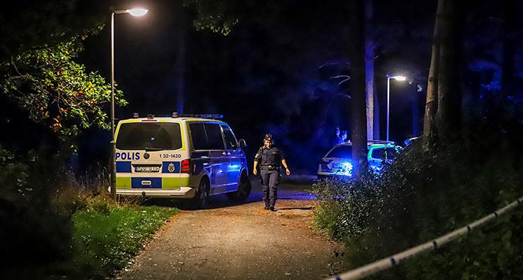 Bilden är tagen utomhus, vid en gångväg. Det är mörkt ute, men det finns lampor som lyser upp. Det är skog runt gångvägen. Det syns polisbilar och en polis.