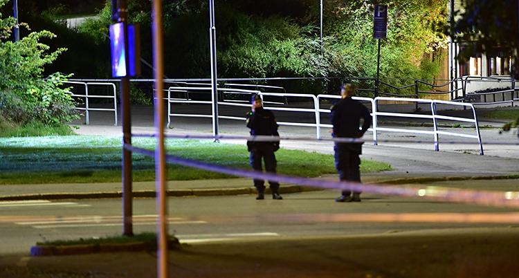 Det är en mörk gata. En bit bort går två poliser. Det syns några träd och buskar.