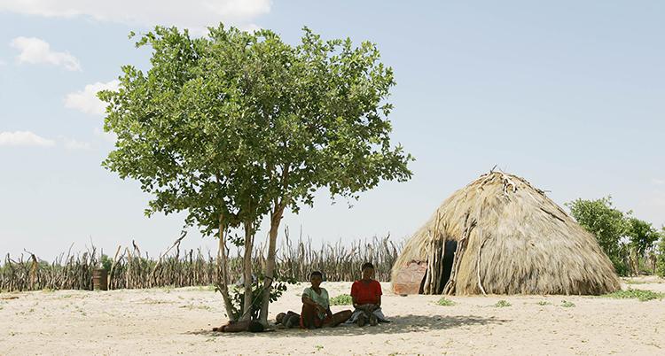 Två kvinnor söker skydd under ett träd i landet Botswana.