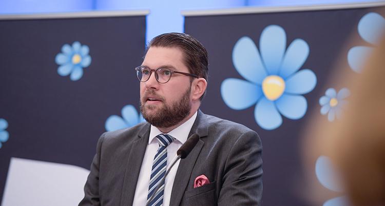 Åkesson talar. Bakom honom är bilder på partiets symbol, en blåsippa.
