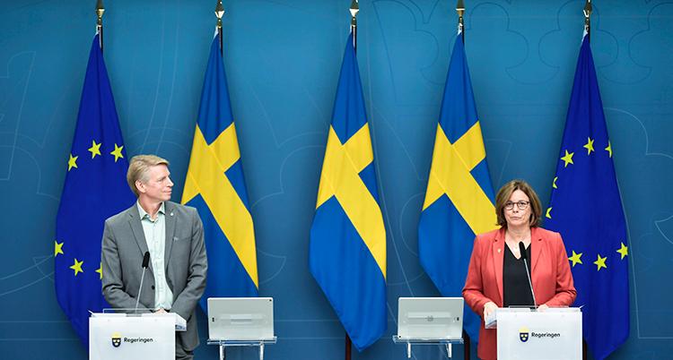 De står upp en bit ifrån varandra.. Bakom dem hänger flera svenska flaggor och EUs flaggor.