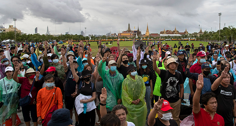 Folk i regnkläder och munskydd höger knutna nävar. Bakom dem syns ett palats med guldtak.