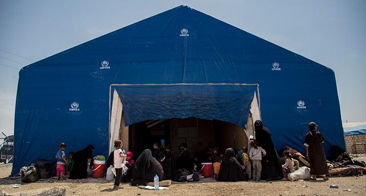 Ett stort tält med flera kvinnor och barn utanför. Kvinnorna har svarta heltäckande slöjor.
