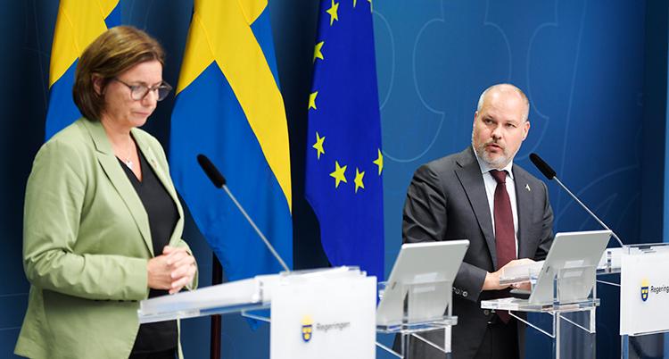 Lövin och Johansson står framför en svenska flagga och en eu-flagga och talar.
