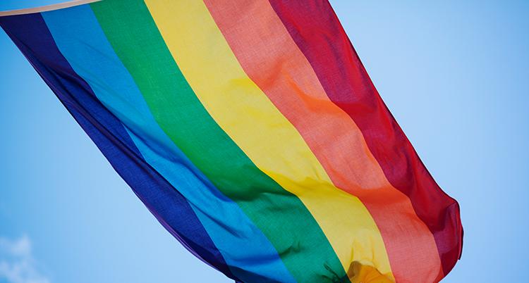 En regnbågsflagga som syns mot en blå himmel.