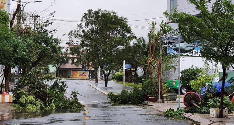 En stad med hus och en gata där träd blåst omkull