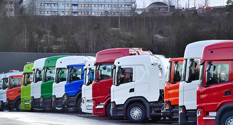 Lastbilar i olika färger står på rad.