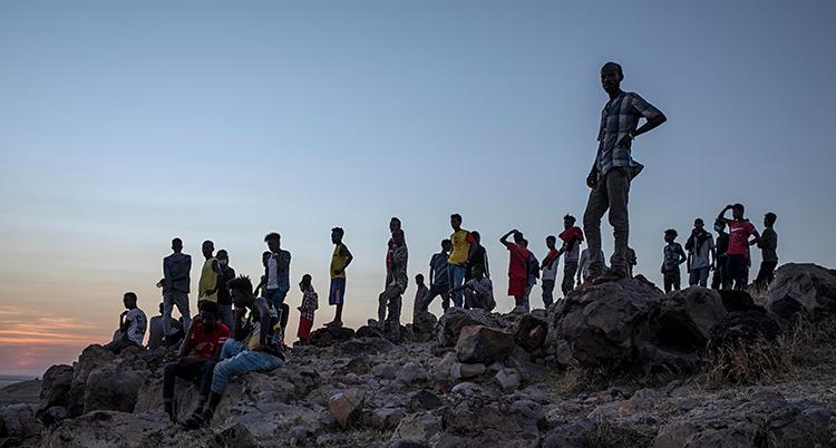 Det är kväll. Människor står på en kulle. Man ser bara deras siluetter. De är flyktingar.