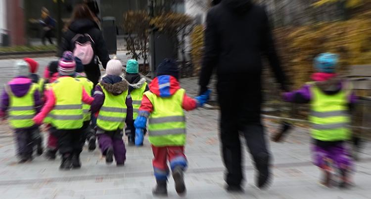 Förskolebarn i gula varselvästar håller varandra och ett par vuxna i händerna och är ute och går på en gata