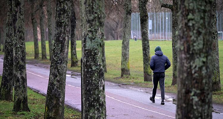 En person går på en väg i en park.