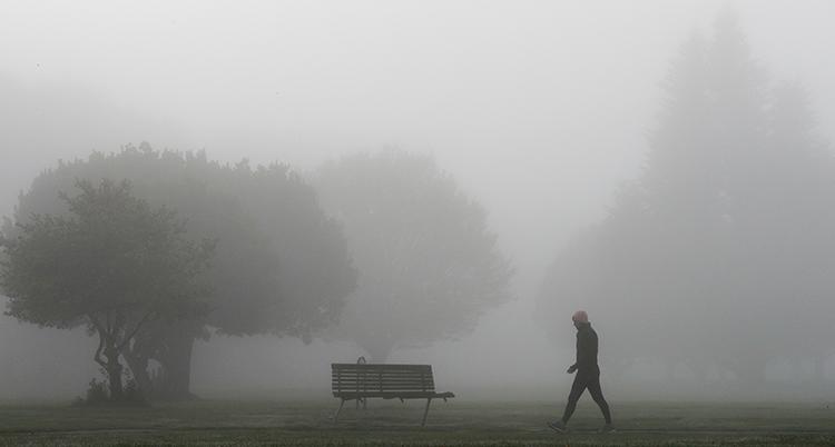 En person går i en park. De är dimmigt. Träden i parken syns knappast.