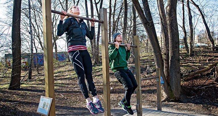 Två personer som tränar i ett utegym. De drar sig upp på räcken.