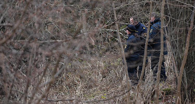Tre poliser står ute i naturen. De står ganska långt bort. Det är massa träd och grenar i vägen.
