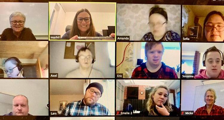 Ett galleri med bilder av tolv personer som pratar i ett digitalt möte
