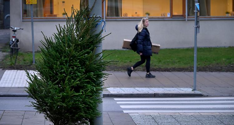 En gran står på en gata.