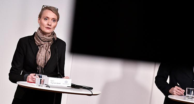 Karin Tegmark Wisell pratar vid ett bord.