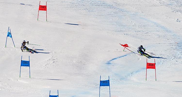 Två personer åker slalom bredvid varandra. Personen till vänster åker runt blå portar. Personen till höger åker runt röda portar.