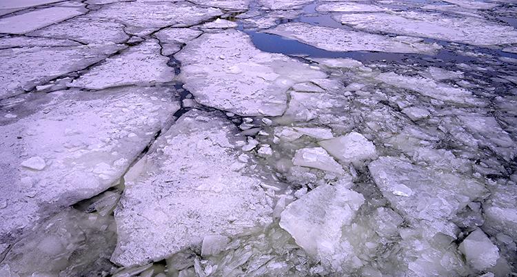 Vi ser en bild på vatten. Det är is på vattnet. Isen har gått sönder i flera bitar.
