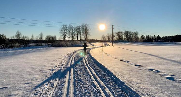 Skidspår går över en åker, blå himmel och en ensam skidåkare
