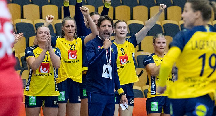 Axnér står i mittenav bilden i blå kläder. Runt om honom står svenskaq spelare med gula dräkter. En del av dem sträcker armarna i luften.