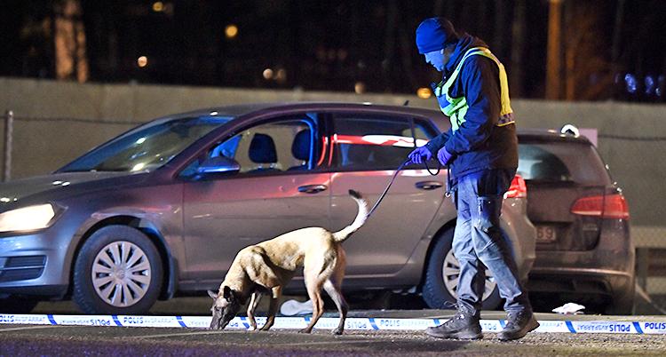 Det är kväll. En polis går runt med en hund. I bakgrunden står en bil. I bilen finns det hål efter skott.