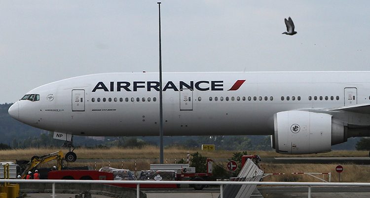Flyget står parkerat på marken.