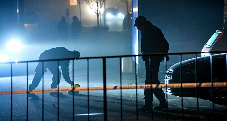 Det är kväll. Två poliser letar spår efter en skjutning.