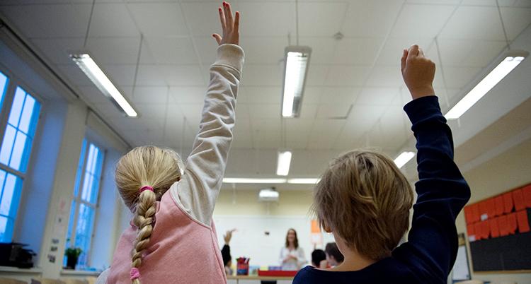 Två elevers ryggar i ett klassrum. De räcker upp handen.