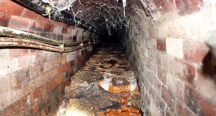 Fett har klumpat ihop sig i ett avlopp där väggarna är gjorda av tegel.