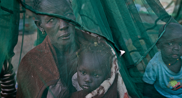 Ett grönsvart nät ses i förgrunden över bilden. Bakom nätet sitter en kvinna med ett barn i hamnen. Bredvid henne sitter en pojke. De skyddas av nätet.