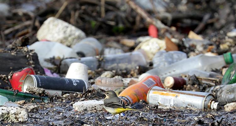 Flaskor av metall ligger slängda på marken.