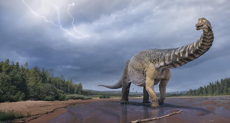 En tecknad bild på en dinosaurie.