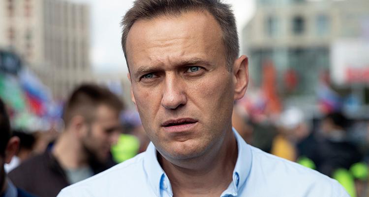 En ansiktsbild på Aleksej Navalnyj.