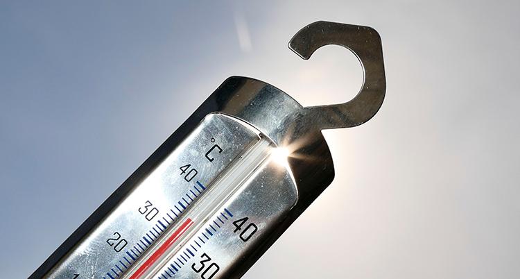 en termometer hålls upp i luften mot solen.