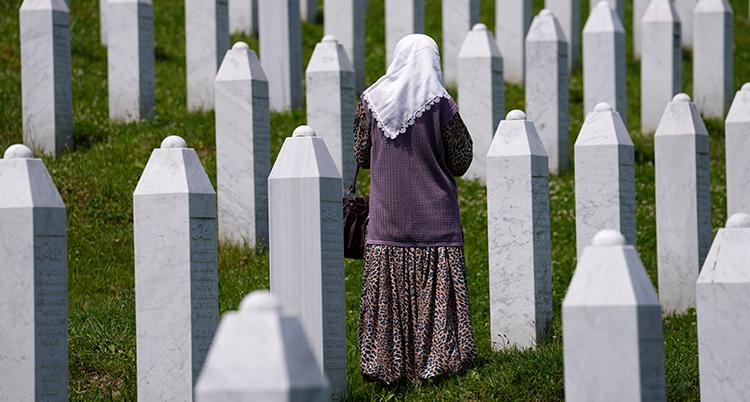 Bosnia War Crimes Mladic