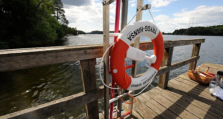 Bilden visar en brygga som ligger vid vattnet. På bryggan finns det en livboj som sitter fast på en ställning.