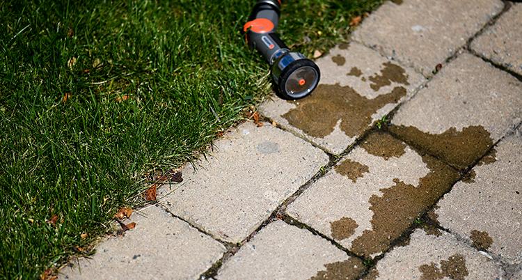 En vattenslang ligger på marken. Det droppar vatten från slangen.