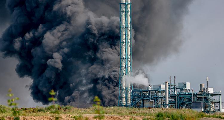Ett fält med gräs. Längre bort i bilden syns en stor fabrik. Det kommer massor av svart rök.