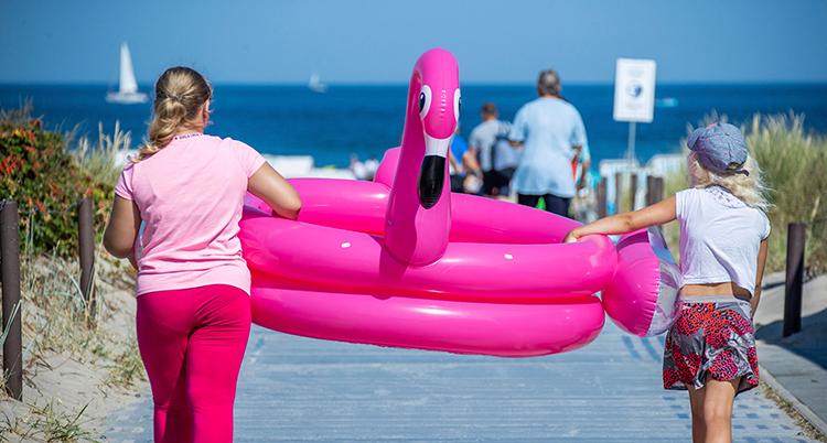 Två barn bär en stor, uppblåst badring som ser ut som en flamingo, mellan sig. De går mot en strand med ryggarna mot kameran.